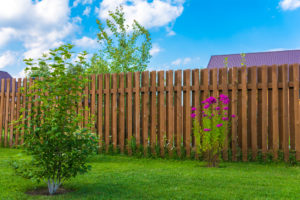 Choosing The Best Wood For A Backyard Fence